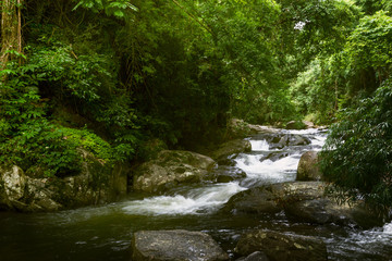 Beautiful Landscape Photography of Waterfall in a deep Forest