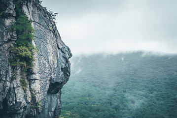 Mountainside with tree foliage and mist. Misty moutain range. Clouds over mountain. Rock climbing mountain side.