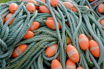 Green ropes with orange floaters