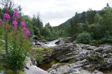 Fluss Rauma, Oppland, Norwegen