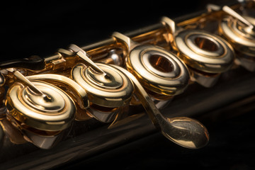 Details of a golden flute black background