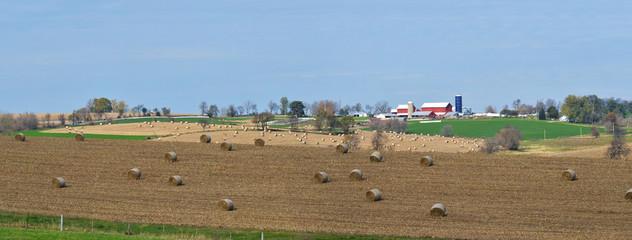 vast midwest farm land panorama
