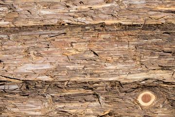 Eastern red cedar bark boards