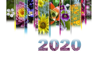 2020 with floral motif very cheerful and colorful