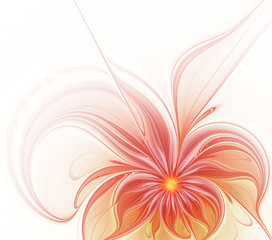 Abstract fractal beautiful flower on a white background