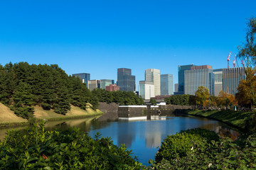 Wall Murals Australia Tokyo central city in autumn / Fall scenery around the Imperial Palace in the central of Tokyo,Japan