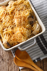 Tetrazzini is an American dish. Spaghetti with chicken, mushrooms and cheese macro. Vertical top view