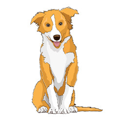 Yellow dog, symbol of the year 2018, vector drawing. Yellow white cartoon shaggy dog full-length isolated on white background