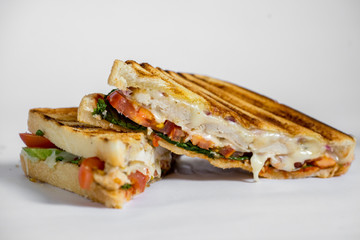 grilled chicken panini with tomato isolated on white