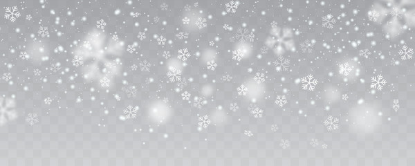 Vector heavy snowfall, snowflakes in different shapes and forms. Many white cold flake elements on transparent background. White snowflakes flying in the air. Snow flakes, snow background. Wall mural