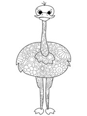 Common ostrich coloring vector for adults bird