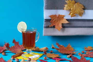 A mug of hot tea with lemon among the dry autumn leaves. A mug of tea and plaid among the autumn foliage on a light blue wooden background.