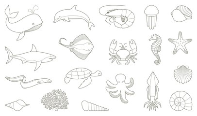 The outlines of fish and other sea creatures