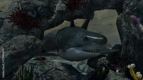 angry shark with open mouth jumps out of the reef in the sea render 3D