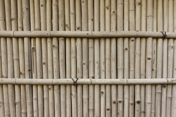 Stong And Tall Bamboo Fence