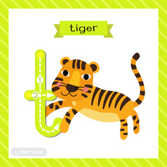 Letter T lowercase cute children colorful zoo and animals ABC alphabet tracing flashcard of Jumping Tiger for kids learning English vocabulary and handwriting vector illustration.