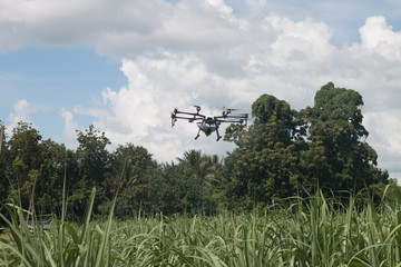 agriculture drone ,technology for plant smart farm
