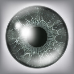Human Eye Iris Close Up Vector. Healthy Medical Concept Illustration