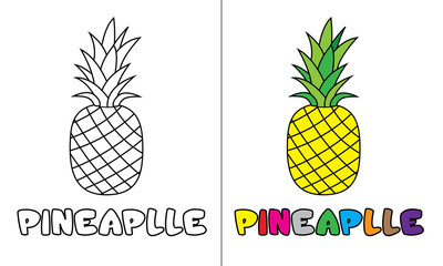 coloring pineapple illustration design