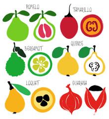 Brush Grunge Exotic Fruits Icons Set.
