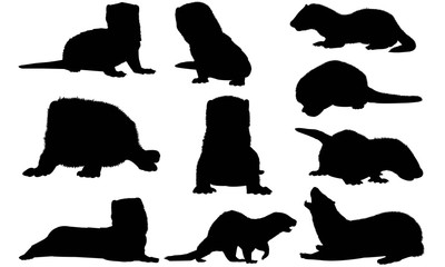 Mink Silhouette Vector Graphics