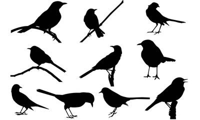 Mocking Bird Silhouette Vector Graphics
