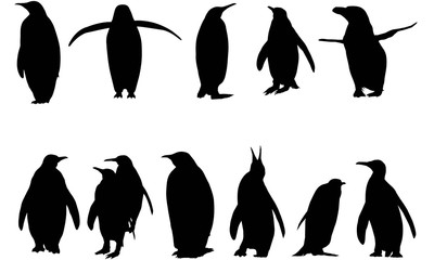 Penguin Silhouette Vector Graphics