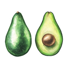 Watercolor avocado pair illustration in high resolution.
