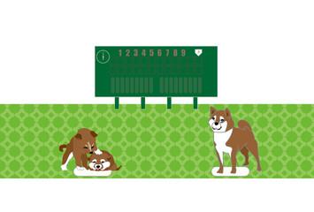 柴犬と野球のイラストのベースボールのポストカード