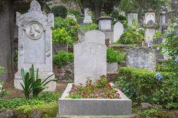 """Dettaglio di una tomba con lapide di marmo e fiori rossi posta nel cimitero acattolico di Roma, detto cimitero degli Inglesi, o anche """"cimitero dei protestanti""""."""