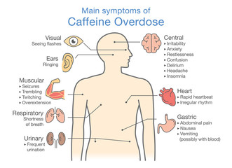 Main symptoms of Caffeine Overdose. Illustration about health check up diagram.