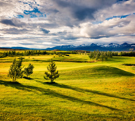 Colorful Icelandic landscape with field of green grass in the June.