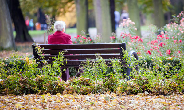 Depressed and sad old woman sitting alone on bench in park