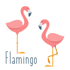 Pink flamingo. Vector illustration in flat cartoon style