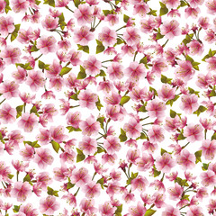 Seamless background with pink sakura blossom