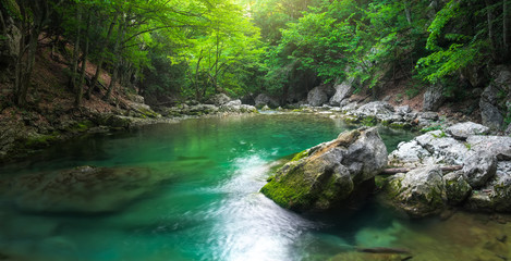 River deep in mountain at summer. Water stream at forest. Panorama