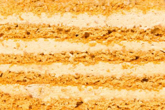 Layers of honey cake with halva, background, texture