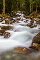 Mountain stream autumn