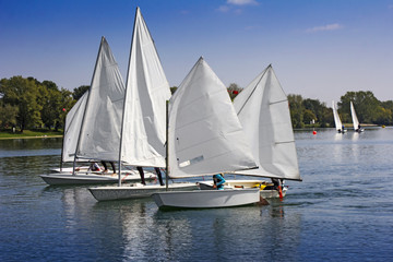 Foto auf Acrylglas Segeln Sports sailing in Lots of Small white boats on the lake