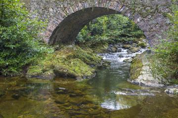 Parnells Bridge - Drehort einer Filmserie - Tollymore Forest Park, Nordirland