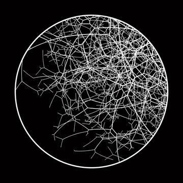 Vector Round  Branchy Element