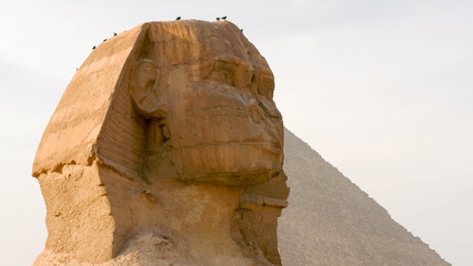 Tuinposter Egypte The Face of the Sphinx