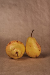 still life, two pears, vertically