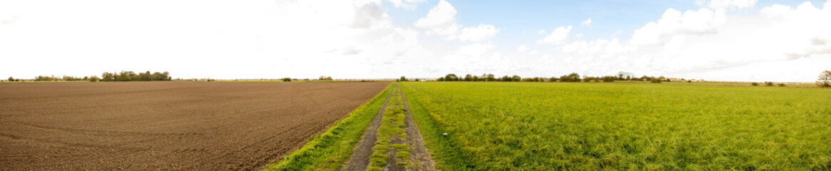 Skidbrooke Landscape