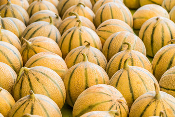 Ripe cantaloupe melons. Food background.