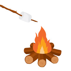 Campfire and marshmallow