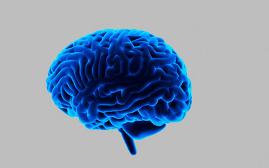 3d rendered Human Brain isolated on dark background
