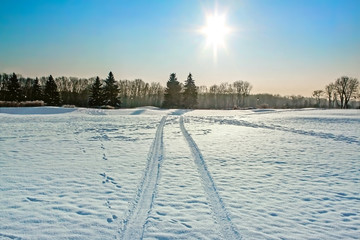 Beautiful winter landscape with car tracks in snow. Place for text.