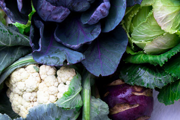 Various of Cabbage Broccoli Cauliflower.  Assorted of Cabbages Background