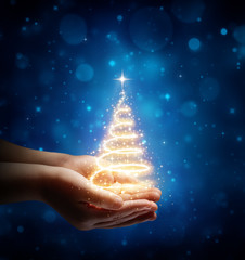 The Magic Of Christmas In Child Hand